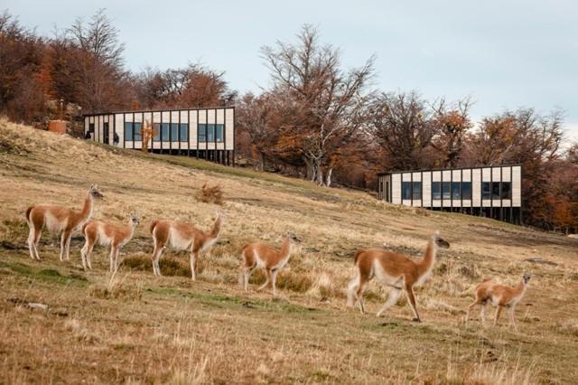 Chile: Hotel Awasi, Torres del Paine - Felipe Assadi + Francisca Pulido