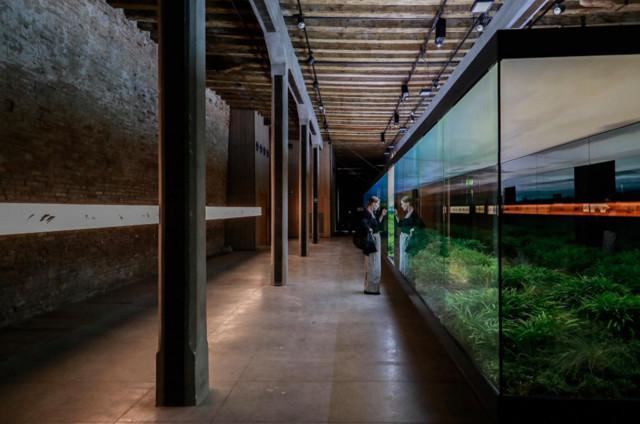 Bienal de Arquitectura de Venecia 2018: Pabellón Argentino, Vértigo Horizontal.
